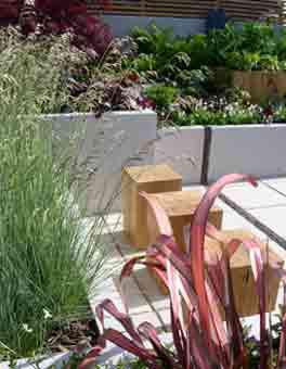 Garden2 Jpg